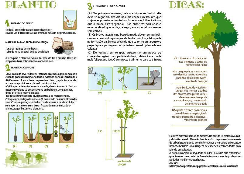 Campanha de incentivo à arborização da cidade de São Paulo