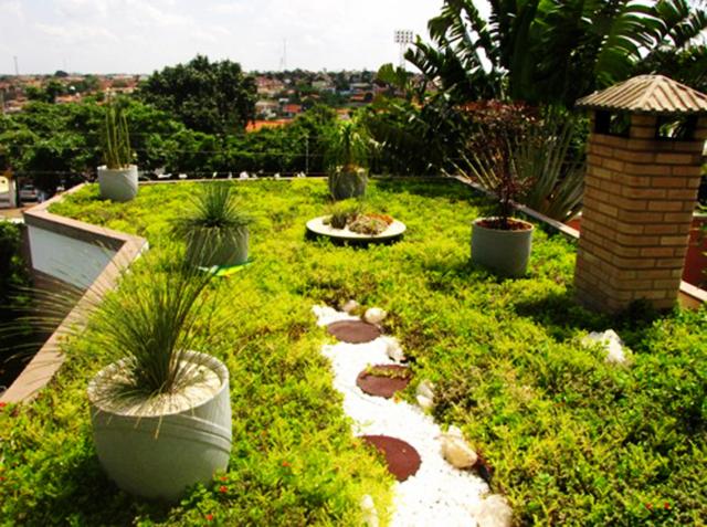 Passo a Passo Aprenda como fazer um telhado verde  Pensamento Verde