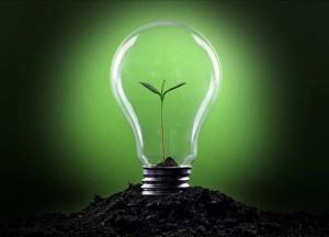 empresa verde 1
