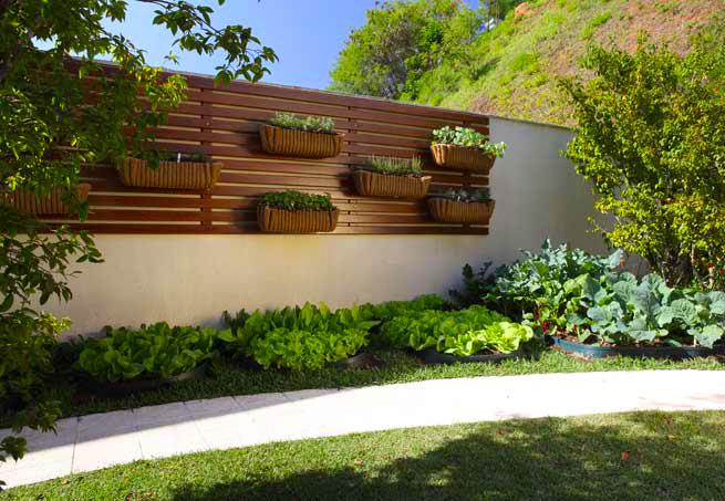 jardim vertical urbano:Jardim De Casa
