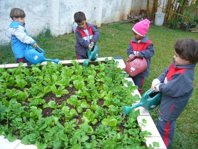 projeto horta e jardim na escola:Projeto visa criar consciência ambiental nas crianças através de