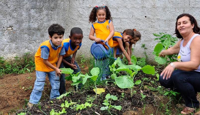 Muitas vezes A importância de projetos de horta escolar dentro da educação  EF19