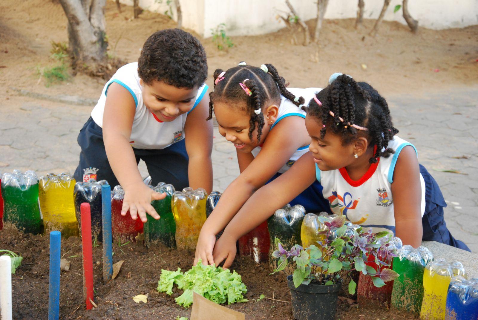 Preferência A importância de projetos de horta escolar dentro da educação  CU46