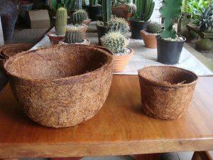Vaso de fibra de coco