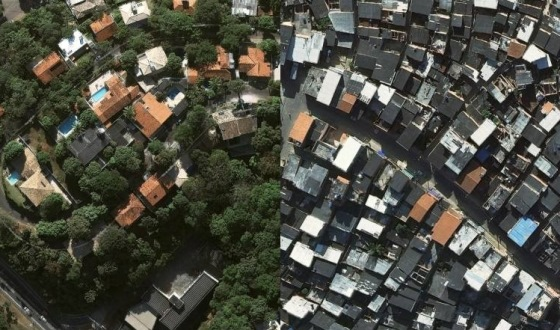 Desigualdade social observada através das árvores.
