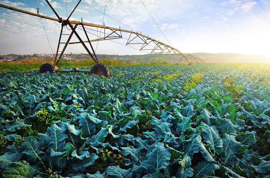 Resultado de imagem para agricultura moderna
