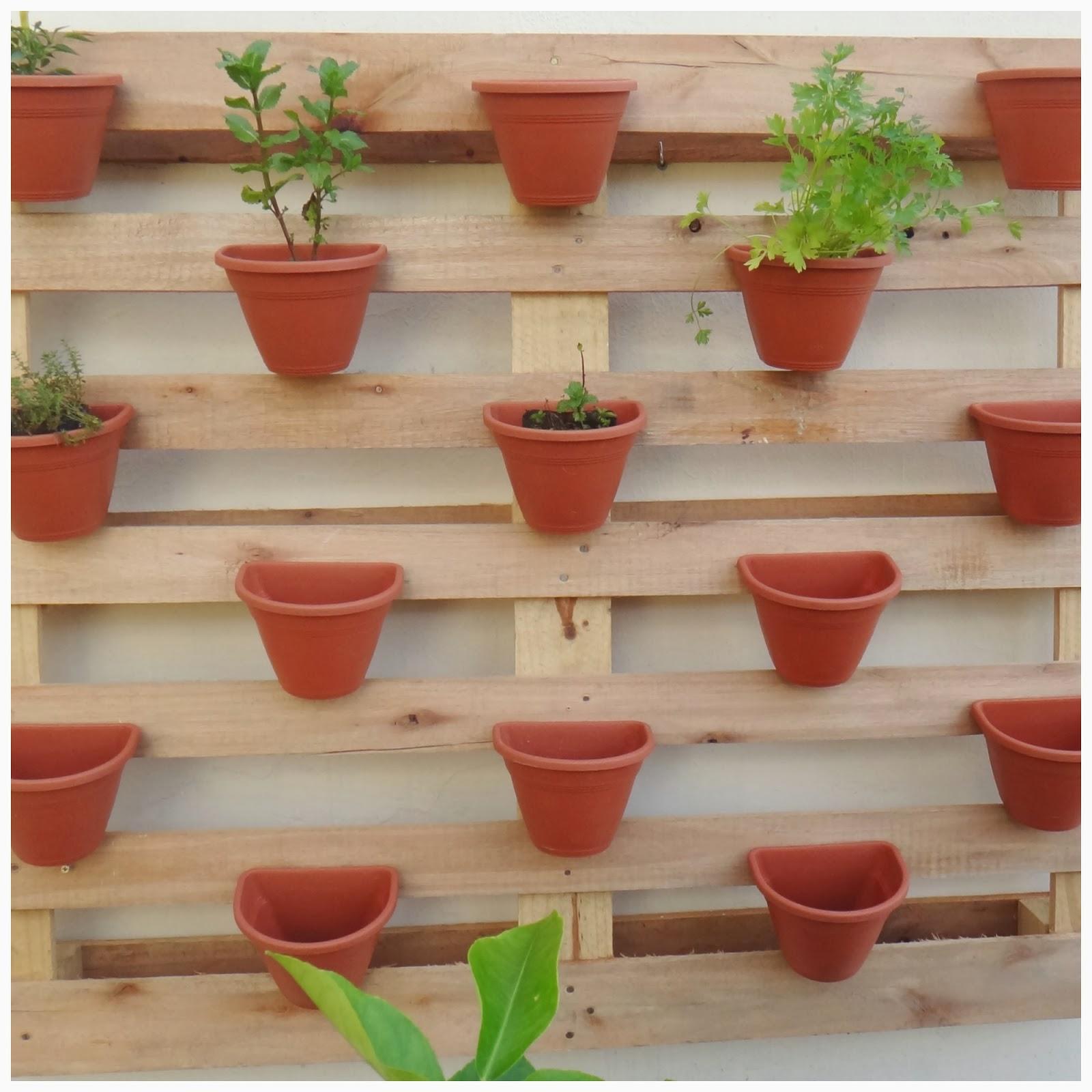 Montando uma mini horta caseira em um apartamento Pensamento Verde #4D7D1E 1600x1600