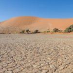Desertificação na África: o avanço e consequências deste mal para o continente