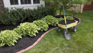 foto de jardim em frente a casa