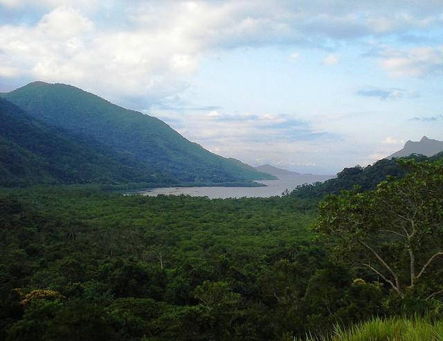 Fotos da amazonia antes do desmatamento 41