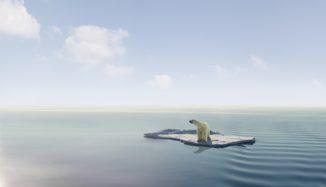 foto de urso no meio do oceano em cima do gelo