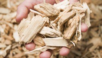 foto de pessoa segurando restos de madeira sustentável